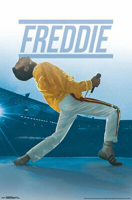$9.99 • Buy Queen: Freddie Mercury Live Wembly Stadium London 22X35 Music Concert Poster