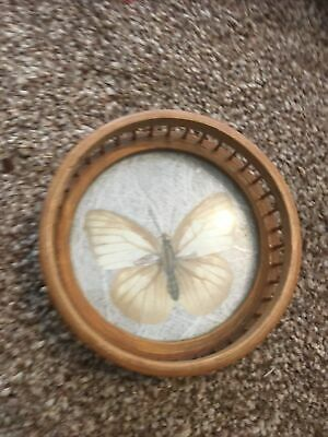 £0.99 • Buy Small Bamboo Coaster With Butterfly Decor, 8cm Across