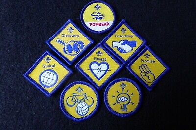 £4.50 • Buy Eight Discontinued Beaver Scout Badges - Post 2002 Review