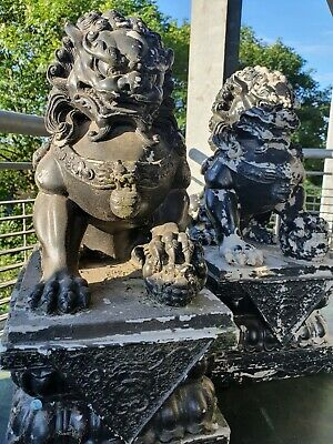 £250 • Buy Chinese Foo Dogs