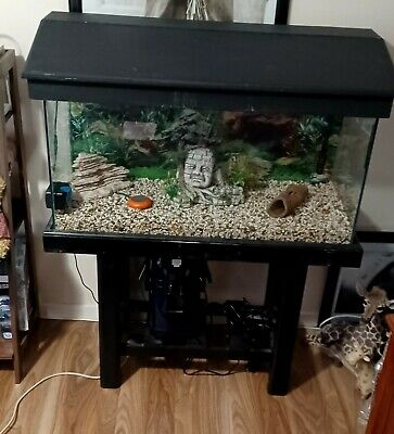 AU350 • Buy 3ft Fish Tank Used, Stand, Gravel, Lights, Filter And More.