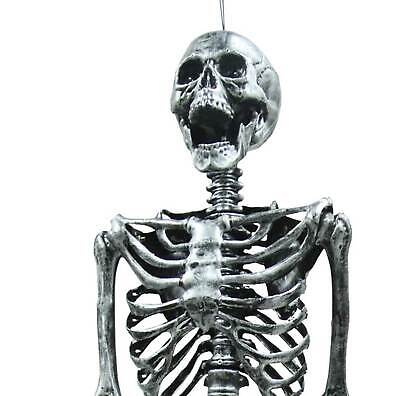 $89.97 • Buy Life Size--BARNEY SKELETON--Human Skull Cheap Halloween Prop Building Decoration