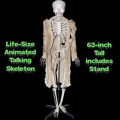 $99.97 • Buy Standing Life Size ANIMATED TALKING HUMAN SKELETON Halloween Haunted House Prop