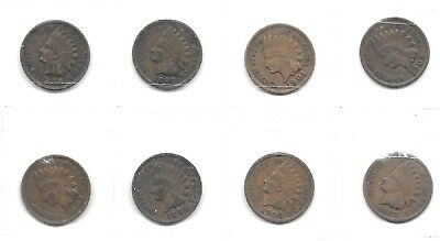 AU40 • Buy Usa  8 Different Date Indian Head Cent Coins