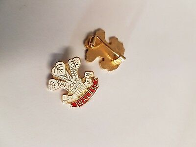 £1.99 • Buy Wales Rugby Prince Of Wales Feathers Badge Collectors Enamel Pin Badge NEW