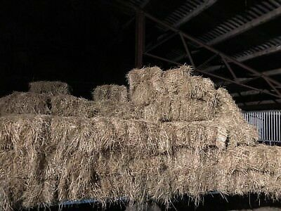 £900 • Buy 150 Small Square Bales Of Hay
