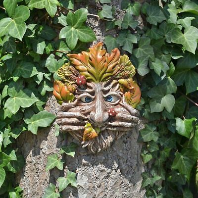 £15.95 • Buy Cheeky Mouth Treant Face Wall Plaque Garden Greenman Wicca Pagan