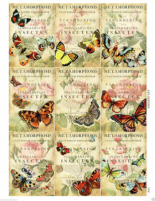 Butterflies & Spring Flowers Glossy Finish Card Toppers - Crafts Embellishment • 3.25£