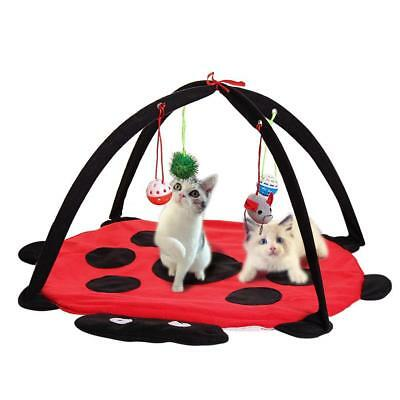 Red Cat Bed Pet Toy Tree Furniture House Post Scratcher Play Condo-Kitten • 7.74£