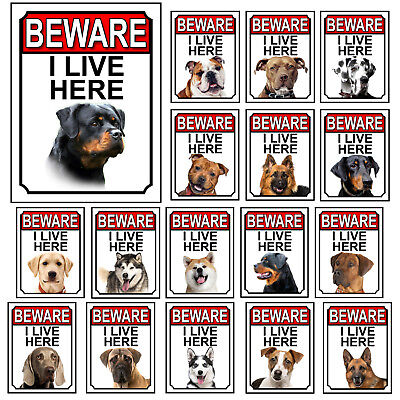 £4.25 • Buy Dog Breeds Gate Signs Beware I Live Here Metal Tin Signs Garden Yard Fence Gift