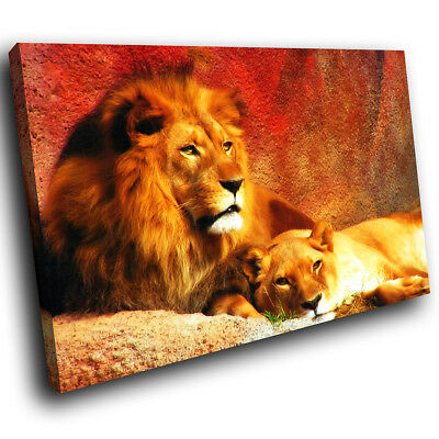 A039 Red Yellow Lion Brown Abstract Animal Canvas Wall Art Large Picture Prints • 14.99£