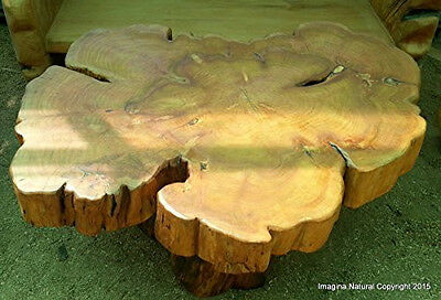 £3520.85 • Buy Large Naturally Unique Cypress Tree Trunk Handmade Coffee Table - Log Rustic