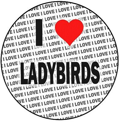 I Love Ladybirds - 8  20cm Circle Icing Cake Topper Decoration - Birthday • 5.25£