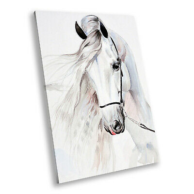 Animal Portrait Photo Canvas Picture Prints Wall Art White Abstract Horse Grey • 19.99£