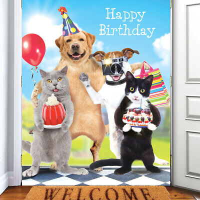 Funny Animals Birthday Card Best Day Ever! Labrador Jack Russell Cats Card NEW • 2.99£