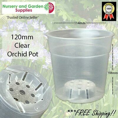AU42.99 • Buy 120mm Clear Plastic Pots PACK Of 50 - Phalaenopsis Orchid