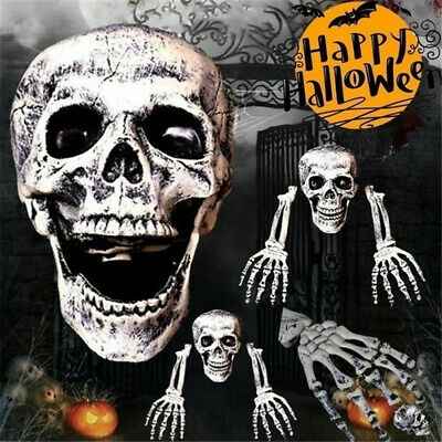 $13.99 • Buy Plastic Jointed Human Skeleton Poseable Prop Halloween Party Prop Decoration