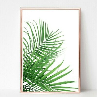 Palm Leaf Leaves Print Picture Wall Art A4 Botanical Plant Unframed Living Room • 3.99£