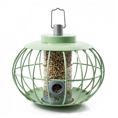 The Nuttery Chinese Lantern Squirrel Proof Bird Seed Feeder – Celadon Green  • 21.99£