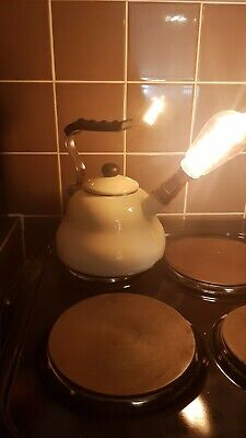 Upcycled Enameled Stove Top Kettle Lamp • 15.10£
