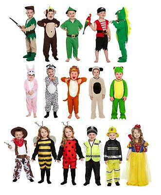 Toddler Fancy Dress Costume Kids Children Outfit Age 2-3 • 7.99£