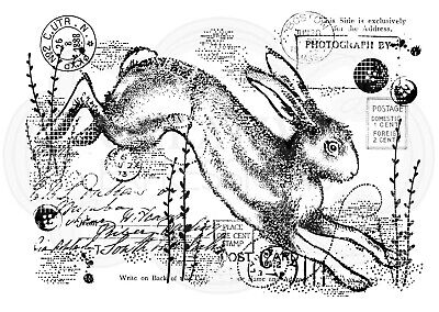 VINTAGE HARE - Clear Magic Stamp - Woodware • 5.49£