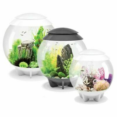 Biorb Tube , Life & Halo Aquariums (ALL MCR LED) • 309.99£