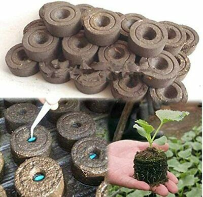 100x Peat Free Organic Coco Coir Compost Coconut Netted Starter Pellets • 17.99£