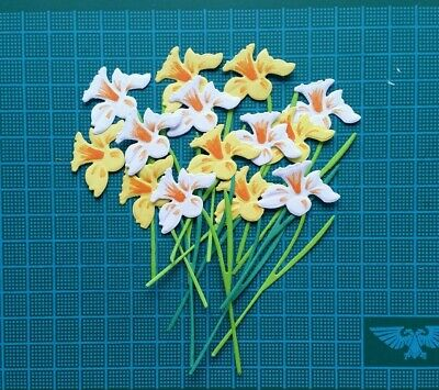 14 Daffodils Paper Die Cuts Card Topper Spring Flowers Garden • 2.50£
