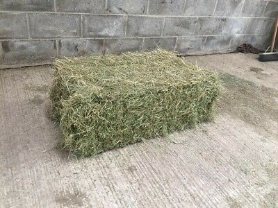 £4 • Buy 2019 Square Bale Horse Hay