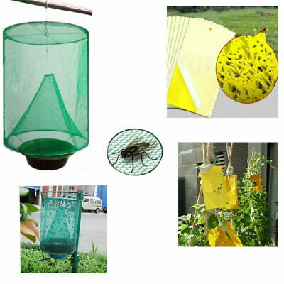 $ CDN18.41 • Buy US Lot Fly Trap Bug Catcher Killer Cage Trapper Insect Whitefly Sticky Paper Hot
