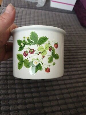 £20 • Buy 1980 Portmeirion Small Size Plant Pot Summer Strawberries By Angharad Menna Ex