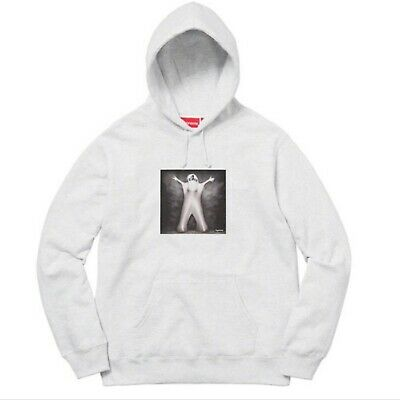 $ CDN187.92 • Buy SUPREME  Leigh Bowery Hoodie   A C*NT   Ash Gray Small 100% Authentic Brand New