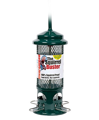 Squirrel Proof Bird Feeder - Squirrel Buster - Marauders Off! Guaranteed And / • 34.67£