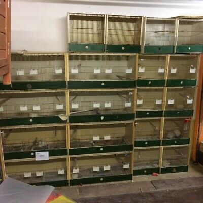 £475 • Buy 10 Available  Plastic Double Breeding Cages With Divider - Budgie, Canary, Finch