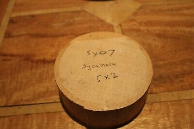 SY07 Sycamore 5  X 2  Inches Wood Turning Bowl Blanks Carving  Woodturning Blank • 9.90£