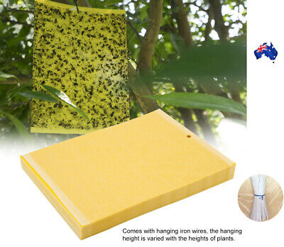 AU3.70 • Buy Yellow Sticky Glue Paper Insect Trap Catcher Killer Fly Aphids Wasp AU
