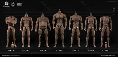 $ CDN89.31 • Buy Worldbox 1/6 Scale Male Body Figure Model Fit Hot Toys Phicen Head Crazy Durable