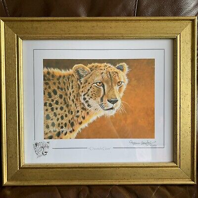 Stephen Gayford 2010 Limited Edition Print CHEETAH GLOW Signed 17/1100  • 25£