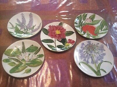 5 X Royal Botanic Gardens Plates Limited Collection Joanna Langhorne Bone China • 20£