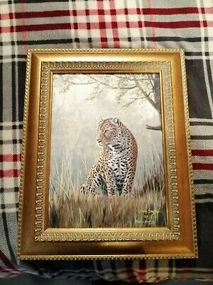 'Mysterious' Leopard  Limited Edition Print By Stephen Gayford • 30£