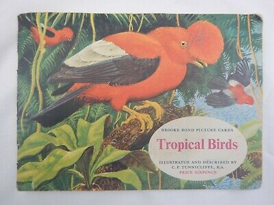 Tropical Birds By Brooke Bond Picture Cards - C. F. Tunnicliffe  2 Missing Cards • 3.75£