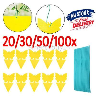 AU11.99 • Buy 20/30/50/100x Dual Sided Sticky Trap Insect Killer Whitefly Thrip Fruit Fly Gnat