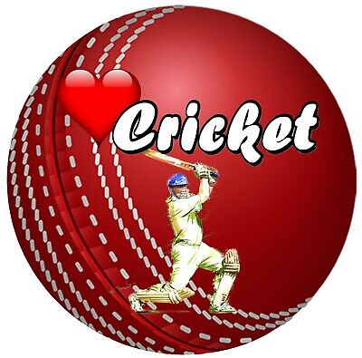 £4.75 • Buy Cricket - Fun Novelty Car / Window Stickers + 1 Free / Flag / Brand New / Gifts