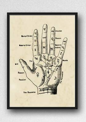 £2.99 • Buy Palmistry Chiromancy Hand Print Picture Wall Art Unframed Vintage Home Decor A4