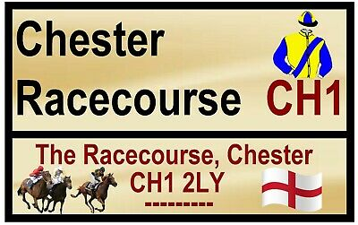 £2.15 • Buy Horse Racing Road Signs (chester) - Fun Souvenir Novelty Fridge Magnet - Gifts