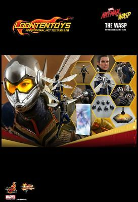 $ CDN354.30 • Buy Hot Toys 1/6 MMS498 – Ant-Man And The Wasp – The Wasp IN STOCK