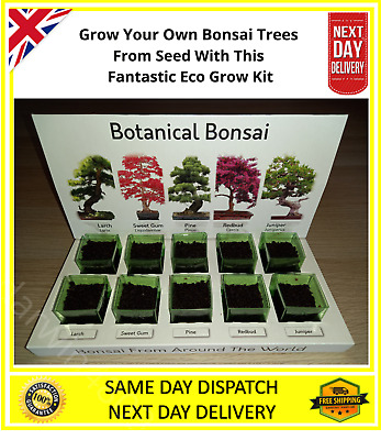 £14.89 • Buy  Eco Bonsai Tree Grow Your Own Kit Everything To Grow 5 Varieties From Seed NEW