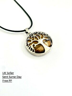 £4.75 • Buy Tiger Eye Healing Tree Of Life Silver Pendant Black Leather Cord Necklace Gift