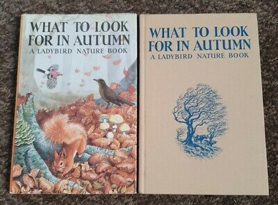 Ladybird Book What To Look For In Autumn 2'6d Series 536 C.F. Tunnicliffe DJ  • 19.95£